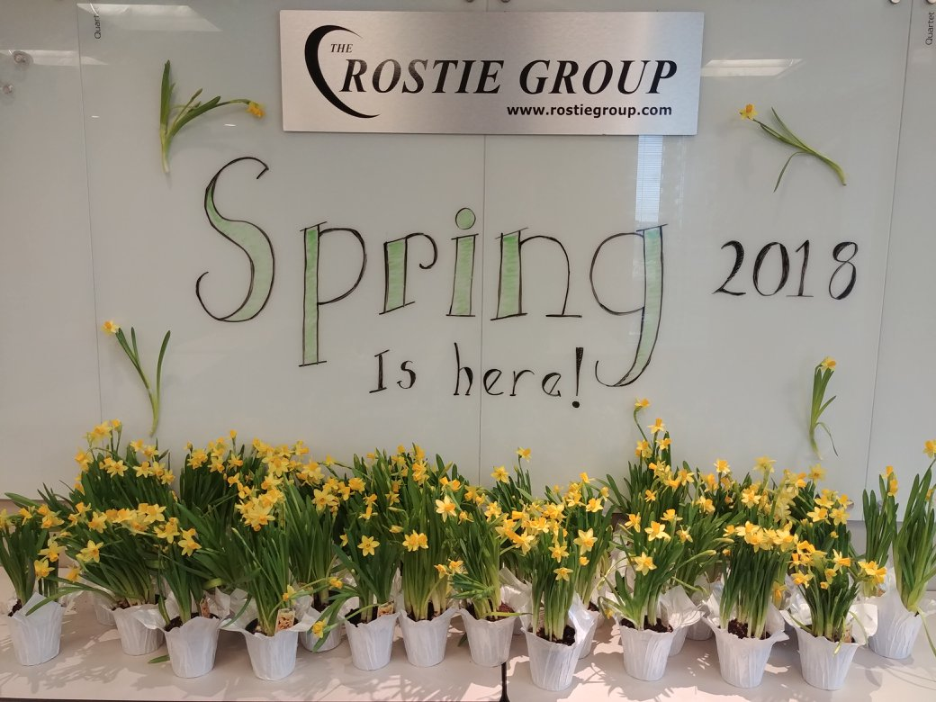 Winter Rostie Group Scoop Spring Image 01